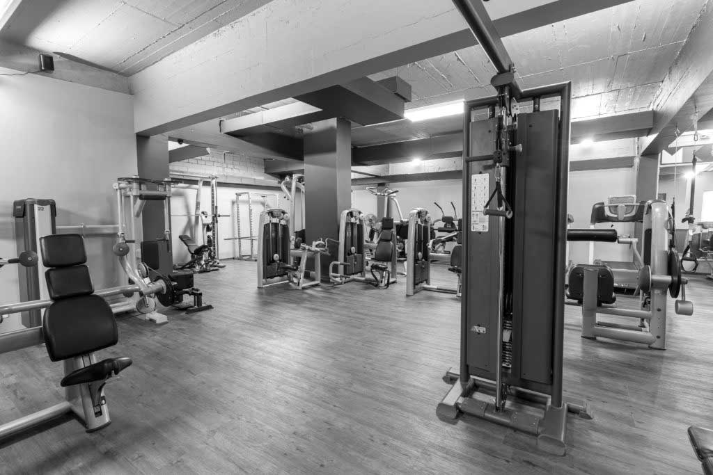 Die Trainingsfläche im Fitnessstudio Sportcenter Kautz in Köln!